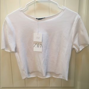 Zara white crop top tee